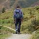 Begin met het einde in gedachte - Prisma Advies Groep | Organisatieontwikkeling